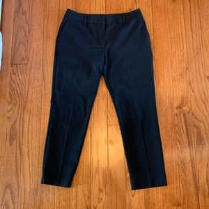 Ann Taylor Factory Navy Blue Curvy Trousers